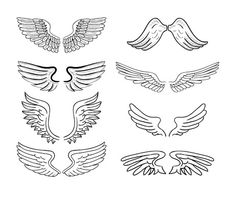 bird  celtic: wings set illustrations.