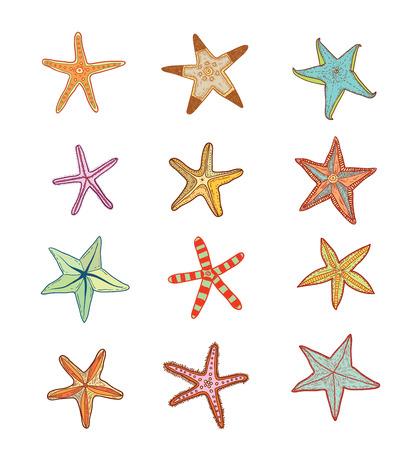 finger fish: Starfishes set .hand drawn Vector Illustration