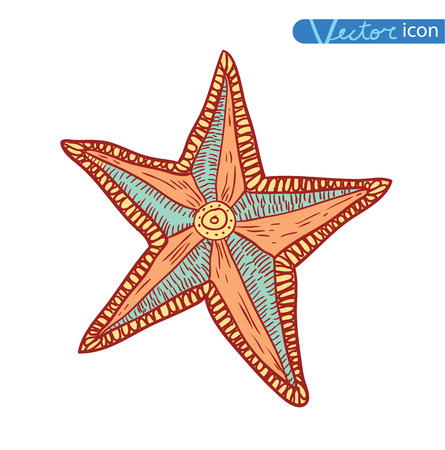 seafish: Starfishes set .hand drawn Vector Illustration