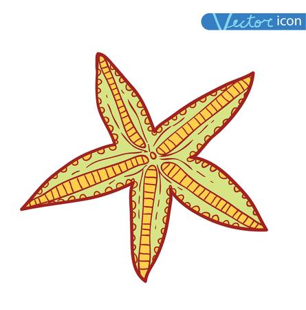 finger fish: Starfishes .hand drawn Vector Illustration Illustration