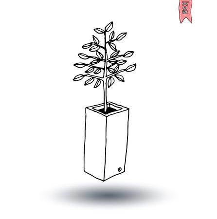beautifully: vase of flowers, Vector illustration. Illustration