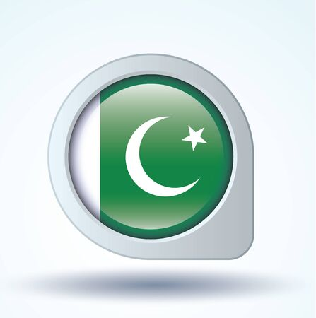 flag of pakistan: Flag of Pakistan, vector illustration Illustration