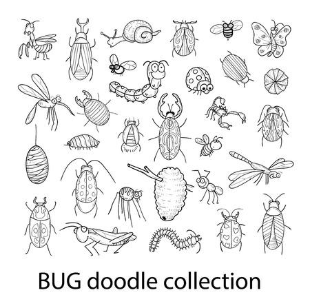 cartoon insect bug icon, vector illustration. Vettoriali