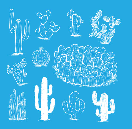 cactus collection,Vector illustration.