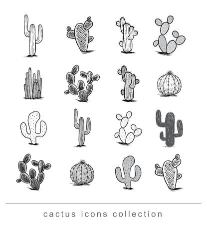 Kaktus-Sammlung, Vektor-Illustration.