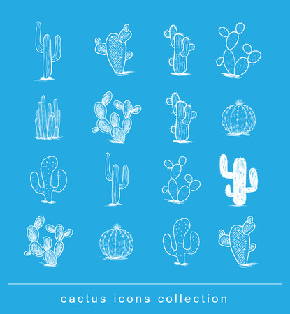 cactus collection,Vector illustration. 일러스트
