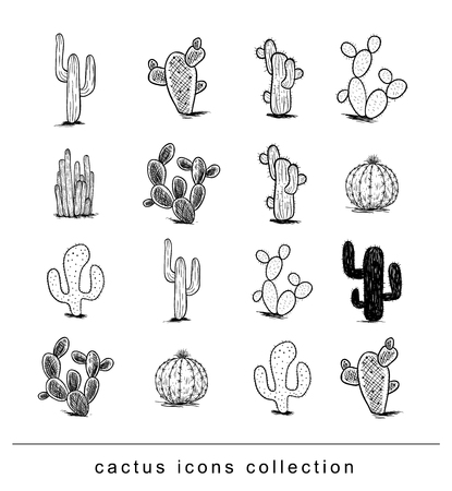 cactus collection,Vector illustration. Ilustracja