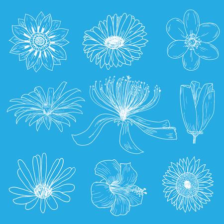 Flowers icons set, vector illustration.