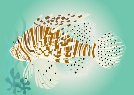 Lion fish illustration Stock Vector - 11076388