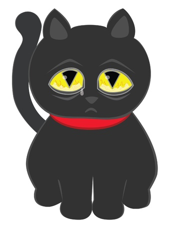 pitiful: Sad black cat