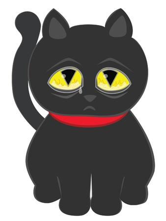 cursed: Sad black cat