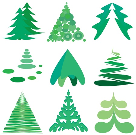 coniferous tree: Pine set illustration
