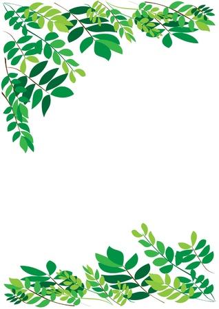 Foliage border Illustration
