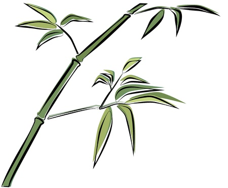 bamboo illustration Stock Vector - 14586450