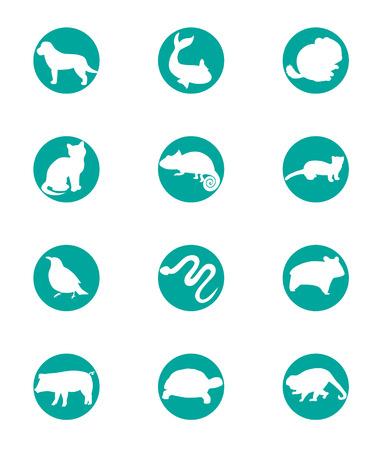Animals icons.
