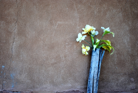 adobe wall: Flowers against adobe wall Stock Photo