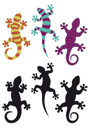 lizards: Gecko silhouettes and three different colored arrangements