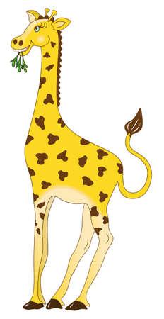 babyish: Cute giraffe eating leaves in babyish cartoon style Illustration