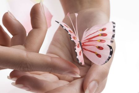 animal body part: woman hands playing with finger with a pink buttrfly Stock Photo