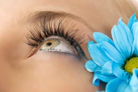 closeup of the eye of woman with creative eyelashes and blue daisy photo