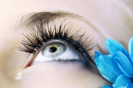 closeup of the eye of woman with creative eyelashes and blue petals  photo