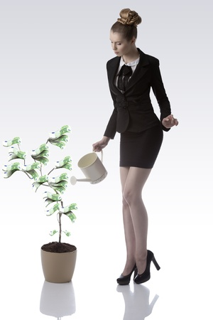 sexy business woman with blonde hair and elegant black suit watering green 100 euro money plant with watering can  photo