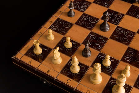 king and queen: Chess photographed on a chessboard