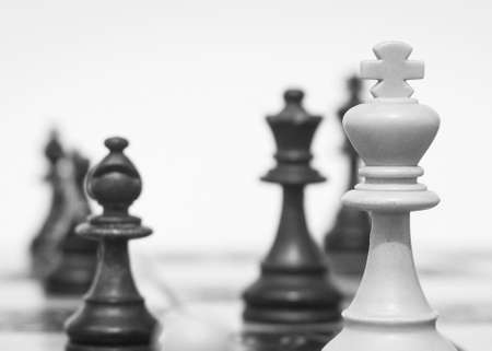 Chess photographed on a chessboard Standard-Bild