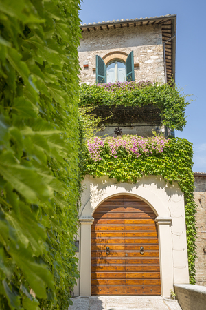 spello: Entry of house wall covered with ivy, ancient village of Spello in Umbria Italy