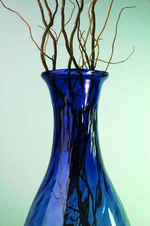 blue vase with brancehs photo