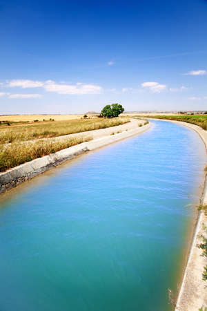 Landscape with irrigation water channel and tree photo