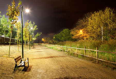 autumn in the city: Night city park with trees and road