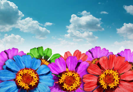 colorize: Floral background with blue sky Stock Photo
