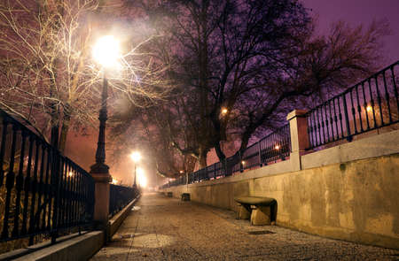 lamppost: City street at night with trees and lamppost