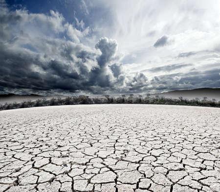 arboles secos: nublado surrealista on�rico paisaje y suelo agrietado Foto de archivo