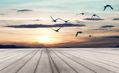 Sunset Dreamscape. Wood floor and birds flying