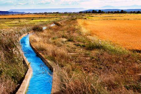 Irrigation water channel. Rural landscape wheat fields