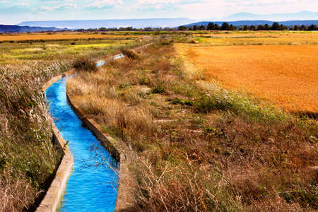 Irrigation water channel. Rural landscape wheat fields