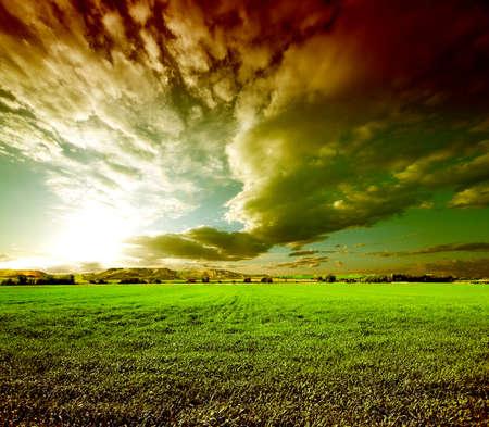 dreamscape: Sunset green fields landscape.Meadows dreamscape