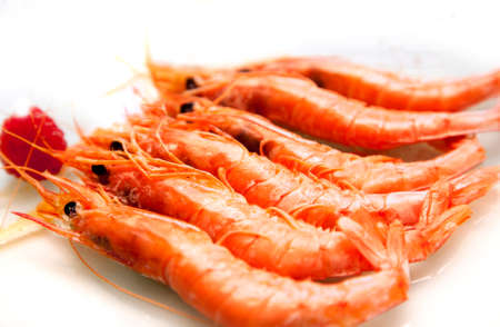 grilled prawns over white plate