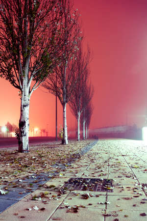 City street at night. Winter image.Foggy sidewalk at night