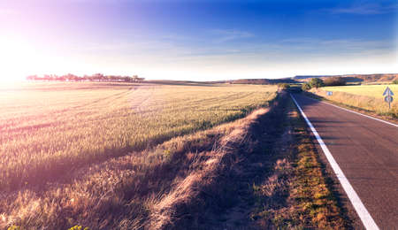 horizon: Adventures and road trips.Sunset and travel concept.Road and fields