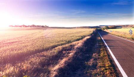 horizonte: Aventuras y trips.Sunset carretera y viajar concept.Road y campos Foto de archivo