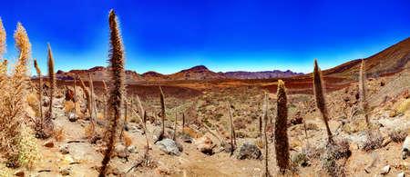 Nature volcanic landscape.Landmark in Spain