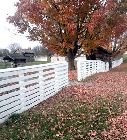 White rail fence and colorful fall trees with leaf strewn green lawn
