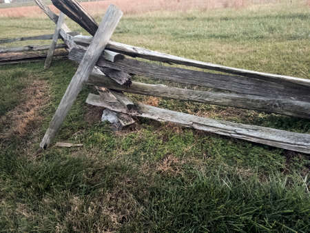White oak split rail fence in open green field