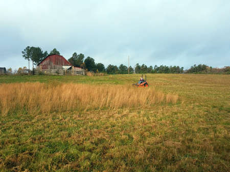 Woman on zero-turn mower cutting down hay field Stock Photo