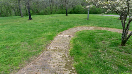 Curving brick path through green lawn and trees