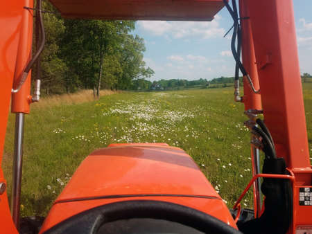 View of green field with blooming white flowers over hood and between lift arms of orange tractor