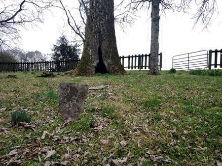 Rippavilla Plantation slave cemetery 2020 worn unreadable grave marker hollow tree Battle of Spring Hill Tennessee